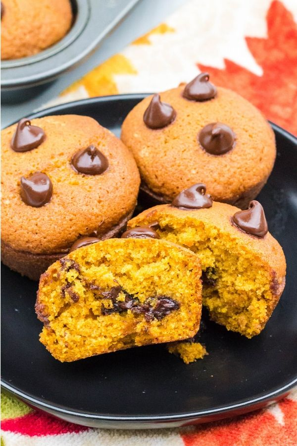 pumpkin chocolate chip muffins on a black plate, with one muffin torn in half to show the chocolate chips inside