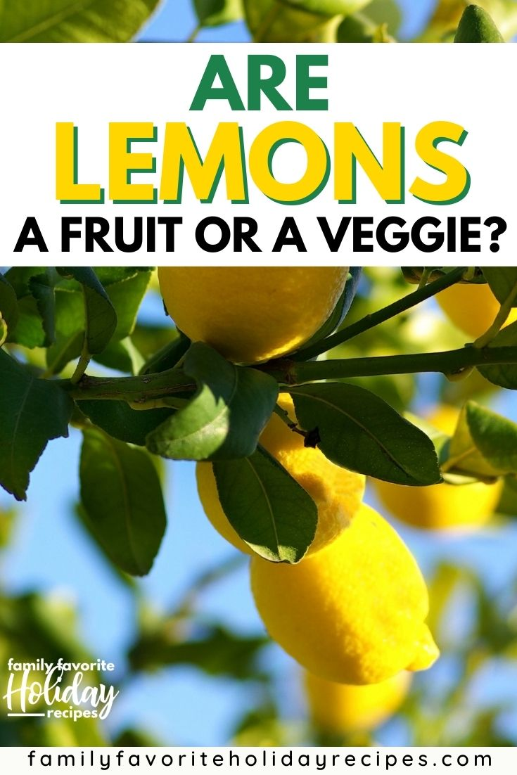 """a lemon tree with several ripe lemons on the branches, with an overlay that reads, """"Are lemons a fruit or a vegetable?"""""""
